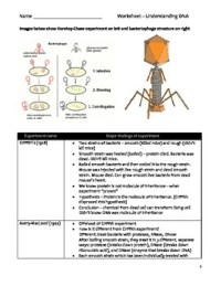 High School Biology Worksheet