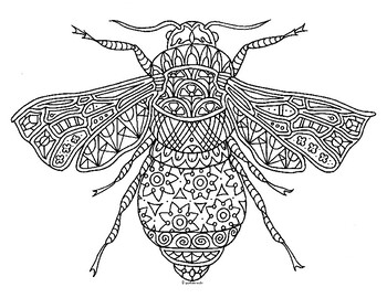 Bumble Bee Insect Zentangle Coloring Page by Pamela