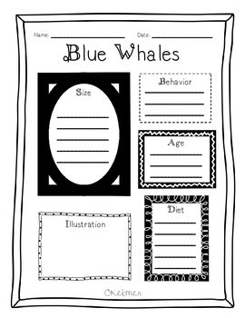 Blue Whales Fluency Passage, Comprehension Activities