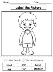 body parts autism science unit preview