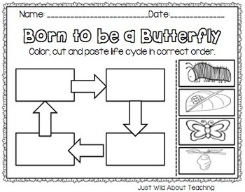 Bopping for Butterflies {butterfly unit with crafts