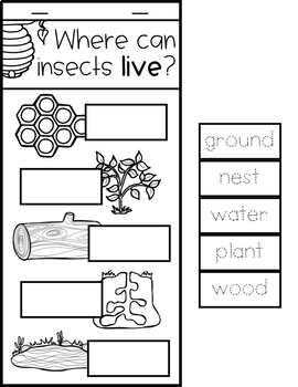 BUGS THEME ACTIVITIES FOR PRESCHOOL, PRE-K AND