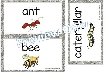 Bugs and Insects Word Wall Cards by Little Learning Corner