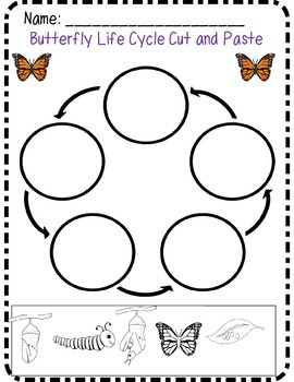 Butterfly Cross Curricular Unit*Common Core Aligned* by