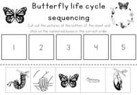 Kindergarten Erfly Worksheet For Sequencing. Kindergarten ...