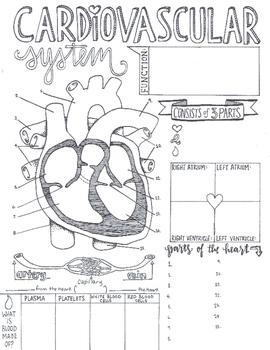Density Mass Volume Density Sketch Notes Note sheet Physical