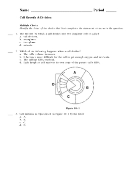 Cell Growth And Division Worksheet