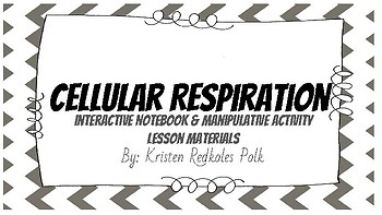 Cellular Respiration Manipulative and Interactive Notebook