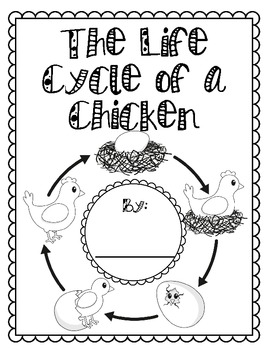 Chicken Life Cycle {Informational Writing Packet} by Casey