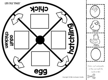 Chicken Life Cycle Interactive Wheel Craft FREEBIE! by