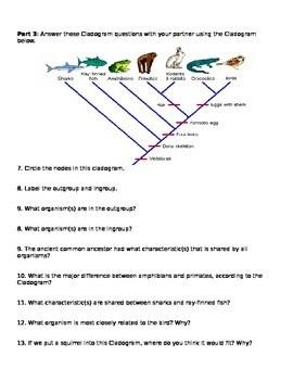 Cladogram Practice Worksheet : cladogram, practice, worksheet, Invertebrate, Cladogram, Worksheet, Printable, Worksheets, Activities, Teachers,, Parents,, Tutors, Homeschool, Families