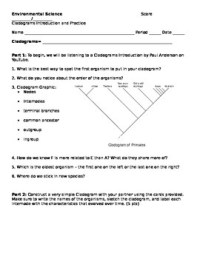 Cladograms Worksheet and Practice by Brianna Jenkins | TpT