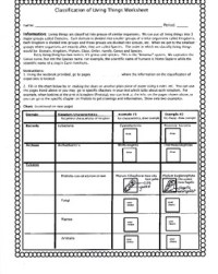 Classification of Living Things Worksheet by Biology Buff