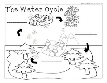 Clouds and the Water Cycle (2 Charts and a Cloud Viewer