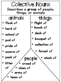 Collective Nouns Unit (Common Core Aligned) by Miss Kelly