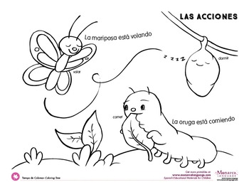 Action Verbs Coloring Pages {Spanish} by Monarca Language