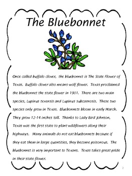 Reading Comprehension: The Bluebonnet by Educating