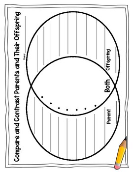Compare and Contrast Parents and Their Offspring Venn
