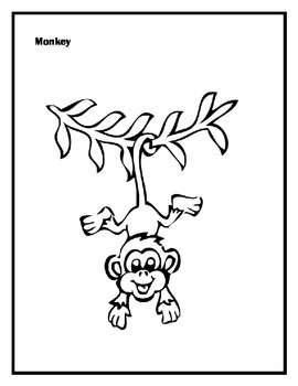 Monkey Short story and comprehension questions: circle