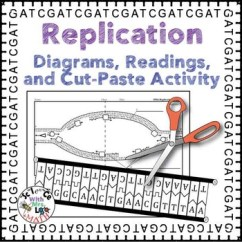 Dna Translation Diagram Three Phase Generator Wiring Replication Activity, Diagram, And Reading For High School Biology