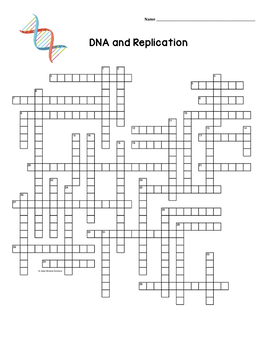 DNA and Replication Crossword Puzzle by Amy Brown Science
