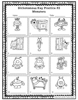 Dichotomous Keys for Beginners- Set of 4- Black and White
