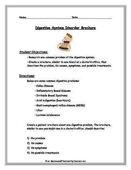 Digestive System Projects Teaching Resources Teachers Pay Teachers