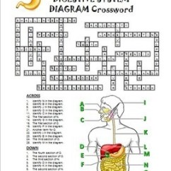 5th Grade Animal Cell Diagram 2001 Ez Go Gas Golf Cart Wiring Digestive System Crossword With {editable} By Tangstar Science