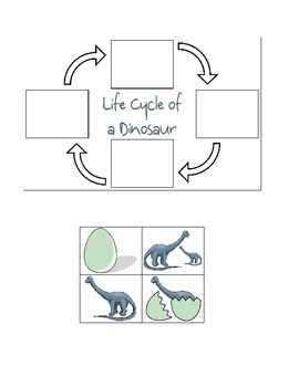 Dinosaur Life Cycle Cut & Paste Activity by Kristen
