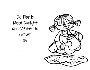 Do Plants Need Sunlight and Water: Student Lab Activity