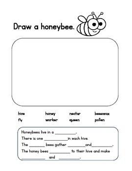 Draw and Write, 1st-3rd grade Leveled Writing Bundle