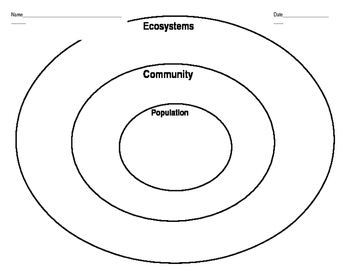 Ecosystems, Population, Community Graphic Organizer by
