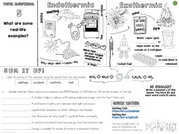 Endothermic Exothermic Cornell Doodle Notes with