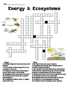Energy & Ecosystems Crossword Puzzle by From Miss McMullen