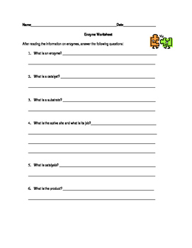 Enzymes Worksheet By Biology Boutique