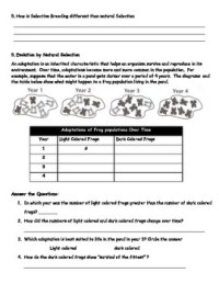 Evolution Natural Selection Worksheet - Kidz Activities