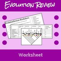 Evolution Review Worksheet by Erin Frankson | Teachers Pay ...