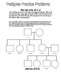 Eye Color Pedigree Worksheet by Jason Demers | Teachers ...