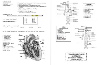 FINAL EXAM: Human Anatomy & Physiology (Spring-2nd
