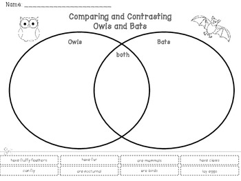 FREE Comparing and Contrasting Owls & Bats... by