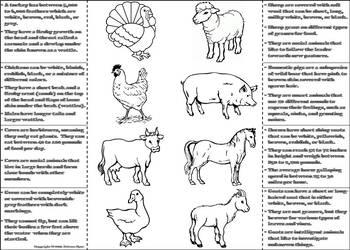 Farm Animals Activity: Interactive Notebook Foldable