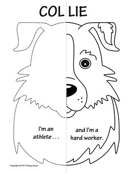 Farm Animals Symmetry Activity Coloring Pages by Mary