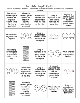 Ecological Relationships Worksheet Answers : ecological, relationships, worksheet, answers, Fluency, Builder:, Ecological, Relationships, Jessica, Potter