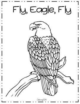 Fly, Eagle, Fly : Reading Street : Grade 3 by The Teachers
