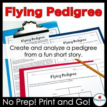 Flying Pedigree Worksheet By Classroom 214