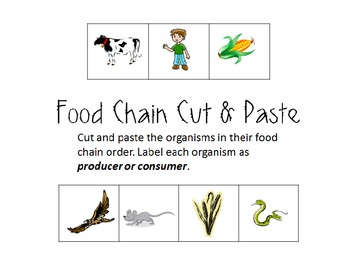 Food Chain Cut and Paste (Producers/Consumers) by Over the
