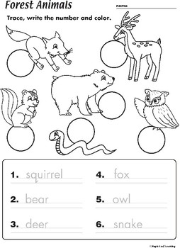 Adult and Baby Animals TpT Science Lessons Baby animals