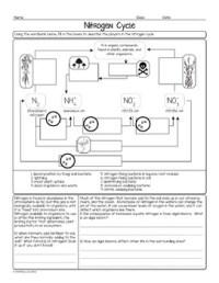 Free Nitrogen Cycle Biology Homework Worksheet by Science ...