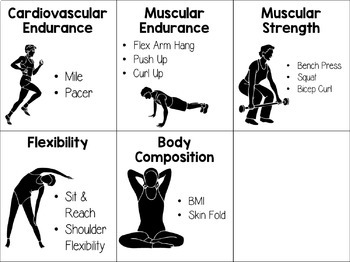 Freebie Health Related Fitness Component Task Card Set By The Sassy Pe Teacher