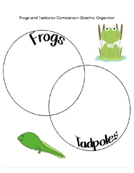 Frog Life Cycle Hands-On Lesson and Activities by Platinum